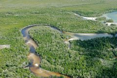 brzegowy tropikalny Obrazy Stock