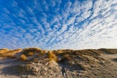 brzegowych duńskich diun północny morze Zdjęcia Stock