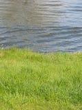 brzegu rzeki Zdjęcie Royalty Free