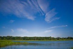 brzegu rzeki Obraz Royalty Free