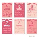 Brzemienność 4-9 tygodnia projekta Wektorowych szablonów dla czasopismo kart Fotografia Stock
