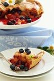 Brzoskwini i czarnej jagody lata kulebiak Obrazy Royalty Free