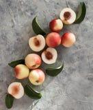 Brzoskwini morela na stołowego lato owoc światła nadokiennym odgórnym widoku obrazy royalty free