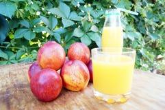 Brzoskwini smoothies i świeże nektaryny Pojęcie dieta, detox, weganin Obraz Stock