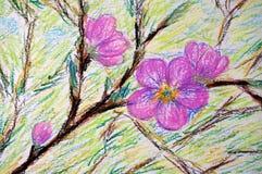 Brzoskwinia kwiaty Obraz Royalty Free
