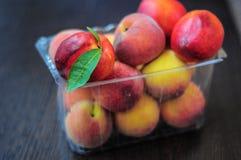 Brzoskwinie i nektaryny w plastikowym pudełku Fotografia Stock