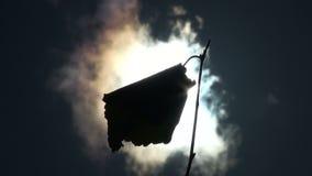 Brzoza liść w wiatrze zbiory