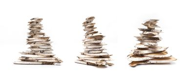 Brzozy drewna plasterki royalty ilustracja