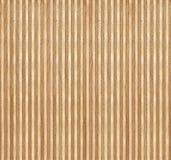 Brzozy drewna sekci tekstura Fotografia Royalty Free