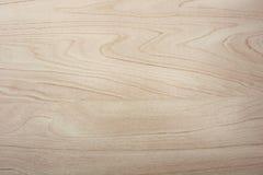 Brzozy drewna tekstura Obrazy Royalty Free