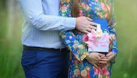 Brzuch kobieta w ciąży w czerwonej sukni Fotografia Stock