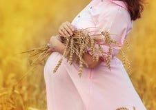 brzuch kobiety w ciąży Obraz Royalty Free