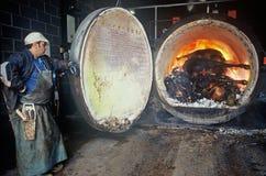 bse威胁被传染的焚化 图库摄影