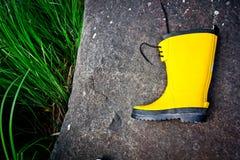 BSingle boot Stock Photography