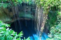 Bästa sikt av Ik-Kil Cenote, nära Chichen Itza, Mexico. Royaltyfri Fotografi