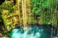 Bästa sikt av Ik-Kil Cenote, nära Chichen Itza, Mexico Arkivfoto