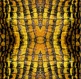 Bstract background of gold and black stylized reptile texture Royalty Free Stock Image