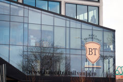 Bt branch Royalty Free Stock Images