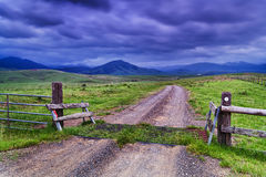 BTops Cattle Grid Gate Royalty Free Stock Photography