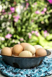Btown eggs. Free rangebrown eggs in a bow Royalty Free Stock Photo