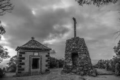 Buçaco δασική Πορτογαλία Στοκ Φωτογραφία
