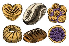 Buñuelo del pan y de los pasteles, carne y empanada de la fruta magdalena y bollo o pretzel dulce mano grabada dibujada en viejo  Imagen de archivo libre de regalías