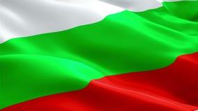 Bułgarski chorągwiany zbliżenie 1080p Folował HD 1920X1080 materiału filmowego wideo falowanie w wiatrze Obywatela 3d Bułgarski c ilustracja wektor