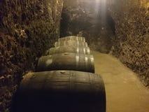 Bułgarski czerwone wino składowy Melnik Bułgaria Zdjęcie Royalty Free