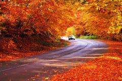 Bułgarska lasowa droga Fotografia Royalty Free