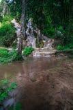 Bua tång (klibbig vattenfall) i Chiangmai Arkivfoton