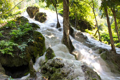 Bua thong waterfall. In changmai Thailand Stock Photos