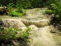 Bua Tong Sticky Waterfalls royaltyfria foton