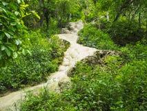 Bua Tong Sticky Waterfalls arkivbild