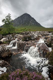 Buachaille Etive Mor Royalty Free Stock Image
