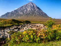 Buachaille Etive Mor in Autumn Stock Photos