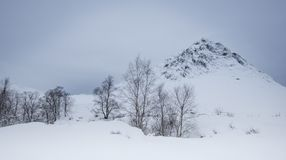 Buachaille Etive Mor. In Jan 2018 with a big fall of snow and tempratures around -10 this was taken just after sunrise and just vefore the wind storm came in Royalty Free Stock Photo