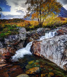 Buachialle Etive Mor Royalty Free Stock Photography