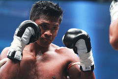 Buakaw Por.Pramuk Royalty Free Stock Photo
