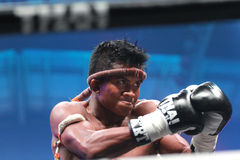 Buakaw Por.Pramuk stock photography