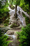 Buatong瀑布- Chetsi春天森林公园 库存图片