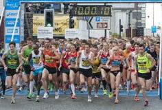 Buba großer Yorkshire Lack-Läufer 2011 Stockfotos