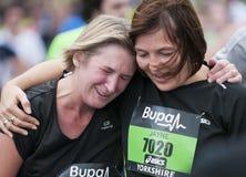 Buba großer Yorkshire Lack-Läufer 2011 Lizenzfreie Stockfotografie