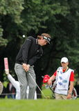 Bubba Watson chips onto the green. Stock Photo