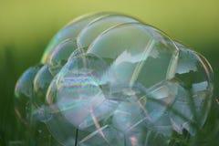 Bubbla på gräset Arkivfoto