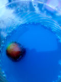 Bubble. A cherry with sparkling wine Royalty Free Stock Images