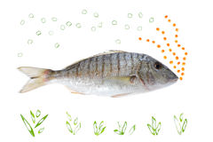 Bubble Fish. Fresh fish with red caviar and fresh onion Royalty Free Stock Photos