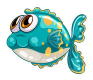 A bubble fish. Illustration of a bubble fish on a white background Stock Images