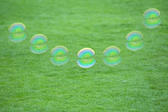 Bubble flying over grass land Stock Photo