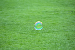 Bubble flying over grass land Royalty Free Stock Images