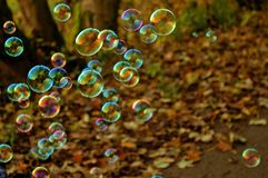 Bubble, Fun, Colors, Game, Flight Royalty Free Stock Images